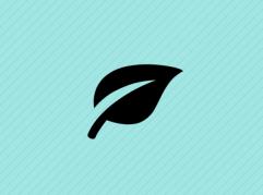 org-development